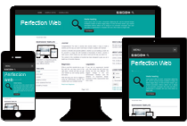 perfectionweb logo